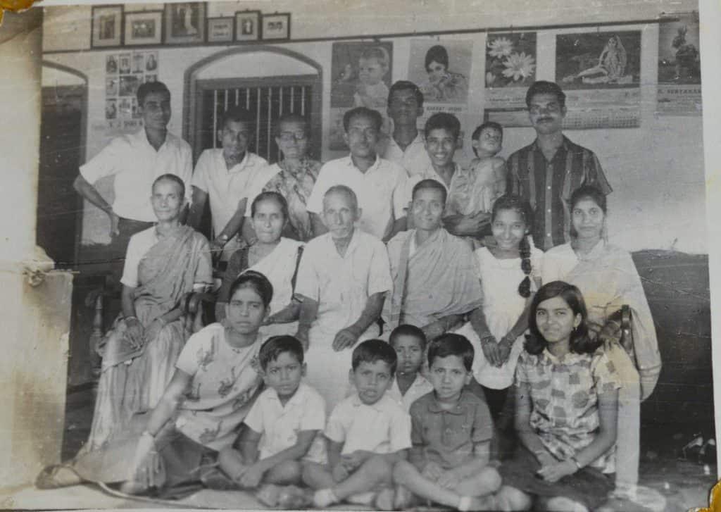 Pinto family